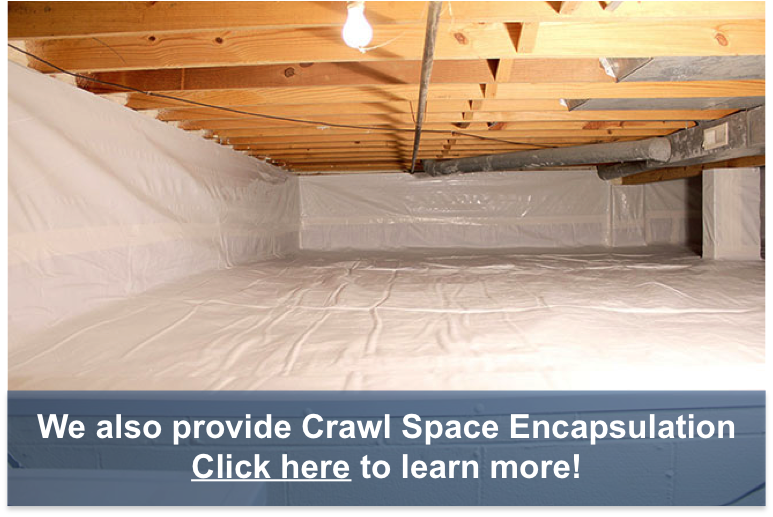 Crawl Space Encapsulation Contractors - Southeast Michigan